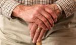 Coraz więcej Niemców pracuje na emeryturze