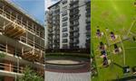 Ceny ofertowe mieszkań na sprzedaż, na wynajem i działek budowlanych