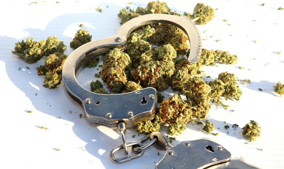 Ruszają konsultacje ws. dekryminalizacji posiadania marihuany