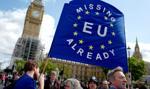 May chce dwuletniego okresu przejściowego po brexicie