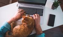 Firma w mieszkaniu – wygodne rozwiązanie, od którego zapłacisz większy podatek