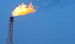 Ropa w USA znów tanieje, bo rośnie liczba jej odwiertów