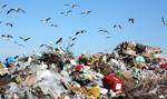 Kowalczyk: Będą kontrole składowisk i przetwórni odpadów