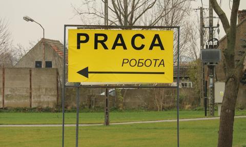 """Polacy pewni """"swojego"""" na rynku pracy"""