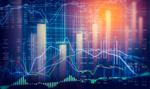 Słaby dolar, rekordy bitcoina i WIG20 [Wykresy tygodnia]