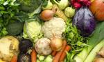 Zarudzki: Ministerstwo Rolnictwa będzie wspierało rolnictwo ekologiczne