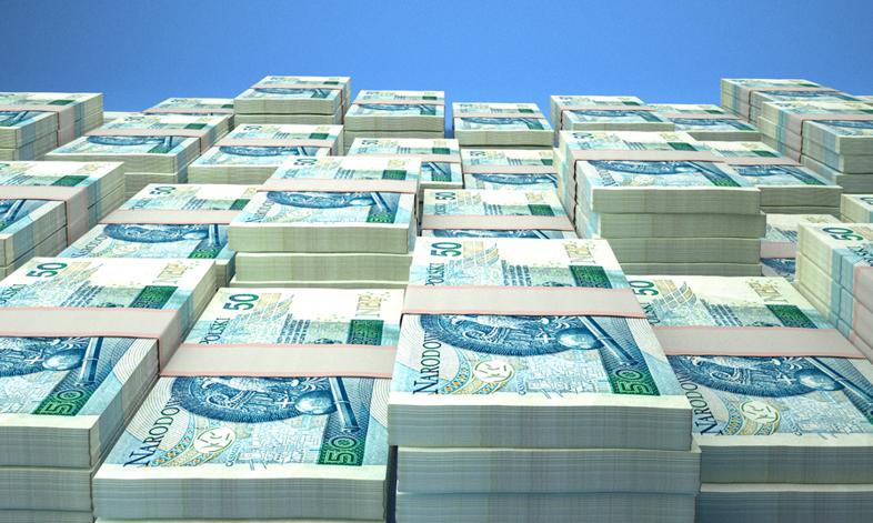 PFR: wartość aktywów Pracowniczych Planów Kapitałowych w maju to 1,25 mld zł