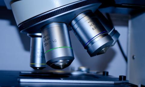 Raport: 84 proc. polskich startupów medycznych planuje wejście na zagraniczne rynki w ciągu roku