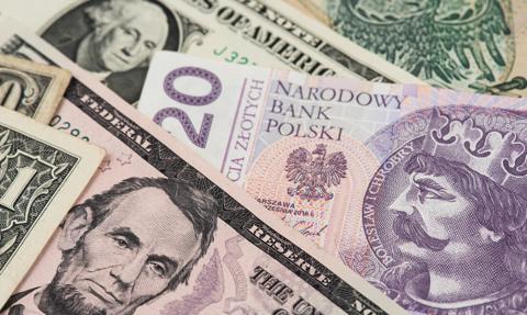 Słabość dolara nie wzmacnia złotego. Kurs euro stabilny