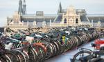 Holandia odgrywa najważniejszą rolę w transferowaniu pieniędzy do rajów podatkowych