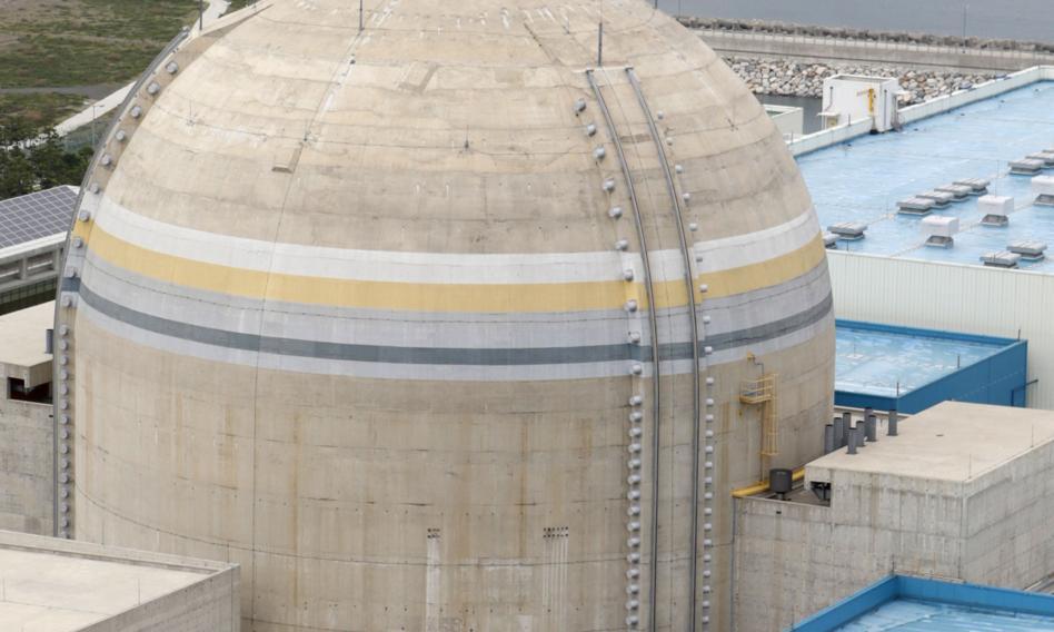 Pożar w elektrowni atomowej w Korei Południowej