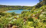 Korzyści z założenia spółki w Kostaryce