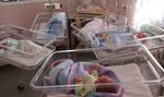Koronawirus utrudnia działanie porodówek. Porody rodzinne odwołane