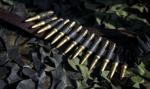 Białoruś podwoiła sprzedaż broni