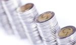 Analiza: w minionym roku złoty zaskoczył stabilnością