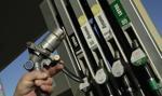 Ceny benzyny i diesla na stacjach paliw powinny się ustabilizować