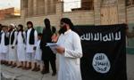 Telewizja Sky zdobywa dane 22 000 islamistów