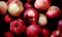 Chińscy inwestorzy rzucili się na jabłka