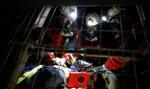 KGHM chce, by psy pomagały w akcjach ratowniczych w kopalniach