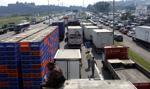 Sejm znowelizował ustawę o transporcie drogowym