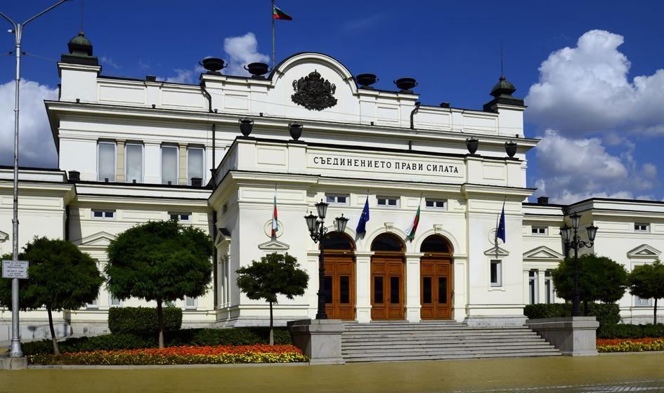 Matki niepełnosprawnych dzieci siłą wyprowadzone z parlamentu Bułgarii