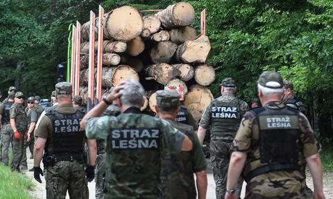 Leśnictwo, łowiectwo i geologia jako działy administracji rządowej. Nowy projekt ustawy