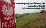 Znaczenie imigracji zarobkowej dla gospodarki Polski