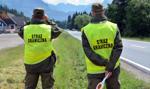Straż Graniczna szuka nowych funkcjonariuszy za 3400 zł netto na start