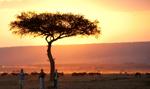 Kenia: pociąg przez busz