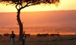 Polski biznes z misją gospodarczą w Kenii i Tanzanii