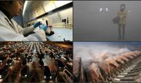 "Chiny 2014 na 7 infografikach. ""Pendolino"", zarobki i ""airpokalipsa"""