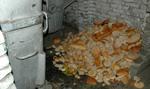 Polska walczy z marnotrawstwem żywności