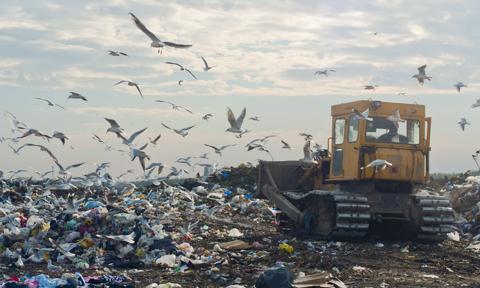 Śmieci zamiast węgla i gazu. Przybywa spalarni