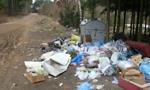Woś: Prace nad surowszym karaniem śmiecących w lasach są bardzo zaawansowane