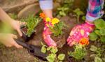 Włochy: ulga podatkowa na zieleń na balkonach i w ogródkach