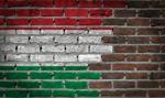 PMI w Turcji znów powyżej 50 pkt., a na Węgrzech wyraźnie spadł