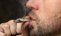 Bez kary za posiadanie 10 gramów marihuany?