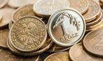 UHY ECA chce wypłacić 3 gr dywidendy na akcję za '18