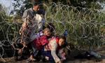 Grecja: policja rozbiła siatkę fałszującą dokumenty dla imigrantów