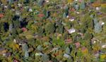 Boom na ogródki działkowe nie słabnie. Skrawek ziemi w mieście na wagę złota