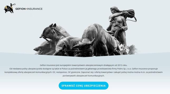 Tak wygląda internetowa strona firmy Gefion w Polsce