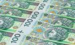 Famago składa wniosek o upadłość - dług wobec Kopeksu to 120,5 mln zł