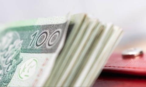 Większość RPP martwiła się w grudniu niewystarczająco słabym złotym