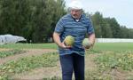 Łukaszenka: białoruska gospodarka w stanie wojny