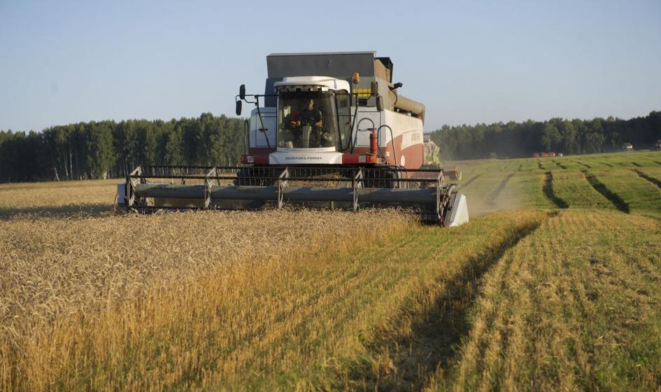 Rolnicy otrzymają aż 70 proc. dopłat za 2016 rok w formie zaliczek
