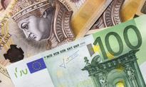 Walutowa korekta. Euro poniżej 4,48 zł