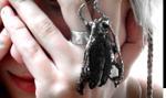 Kobiecy pomysł na biznes: biżuteria z owadów