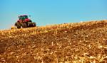Włochy: 20 proc. żywności z importu wyprodukowane z naruszeniem norm