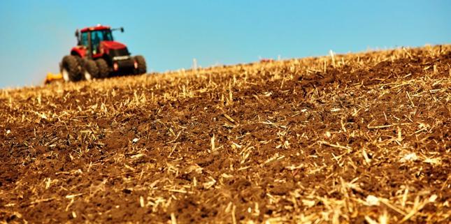 Od soboty ziemia rolna tylko dla rolnika - wchodzą w życie nowe przepisy