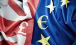 Niemieccy analitycy nie wierzą w brytyjskiego funta